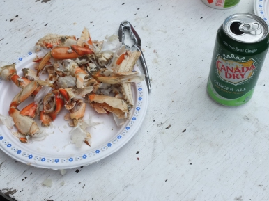 Crab after it is in my belly